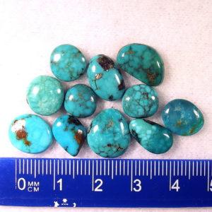 arizona turquoise CAB-010